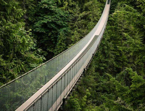embark-bridge-import-5